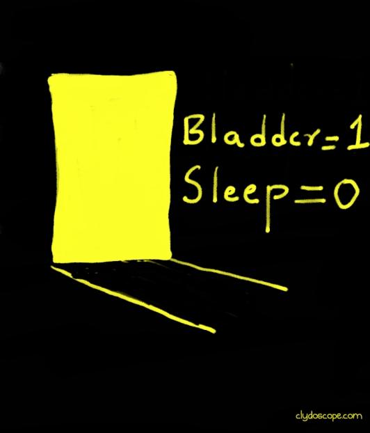 bladder